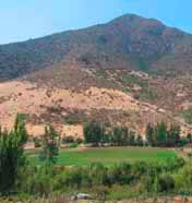 Actividades en Pichidangui