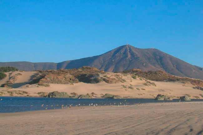 Laguna de Pichidangui